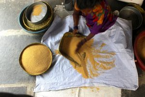 Woman cleaning foxtail millet by hand